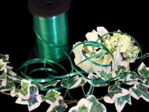 Polyband Dunkelgrün ohne Draht 5mm