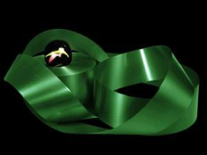 Polyband Dunkelgrün ohne Draht 49mm