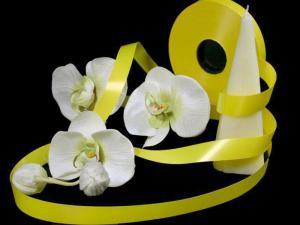 Polyband Gelb ohne Draht 19mm