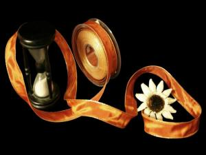 Uniband Goldkante Amerika Cognac mit Draht 25mm