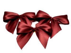 Fertigschleife 2-Flügel bordeaux 25mm 25 Stück im Bänder Online-Shop günstig kaufen