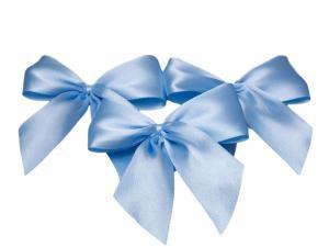 Fertigschleife 2-Flügel hellblau 25mm 25 Stück - im Bänder Großhandel günstig kaufen!