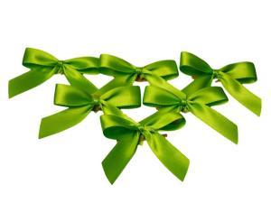 Fertigschleife 2-Flügel hellgrün 15mm 25 Stück - Schleifenband günstig online kaufen!