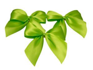 Fertigschleife 2-Flügel hellgrün 40mm 20 Stück - im Bänder Großhandel günstig kaufen!