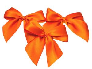 Fertigschleife 2-Flügel orange 25mm 25 Stück - im Bänder Großhandel günstig kaufen!