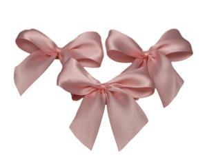Fertigschleife 2-Flügel rosa 25mm 25 Stück - im Bänder Großhandel günstig kaufen!