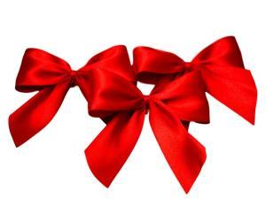 Fertigschleife 2-Flügel rot 25mm 25 Stück - im Bänder Großhandel günstig kaufen!