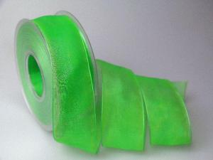 Organzaband 40mm hellgrün ohne Draht - Geschenkband günstig online kaufen!